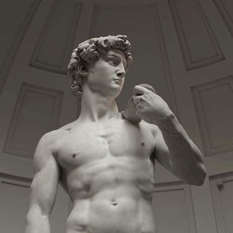 David side profile Michelangelo