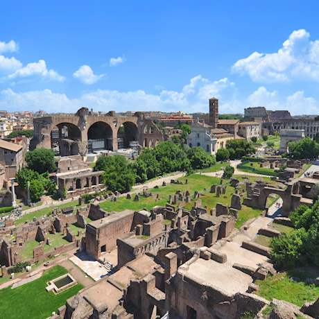 Palatine Hill Panoramic View