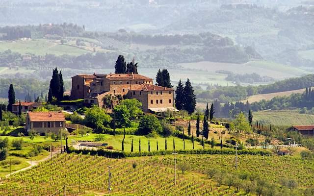 Tuscany vineyard on a sunny day