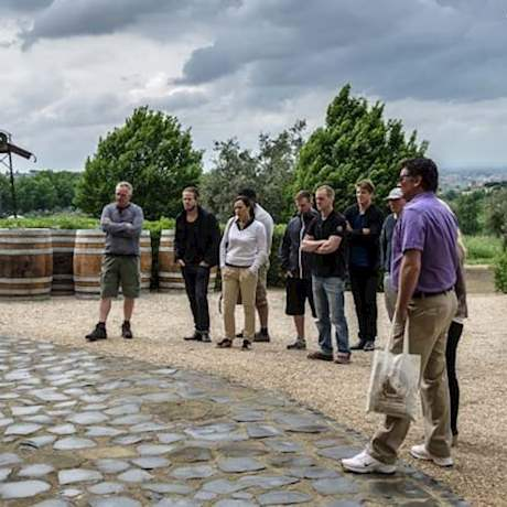 Group on a cloudy day in Frascati