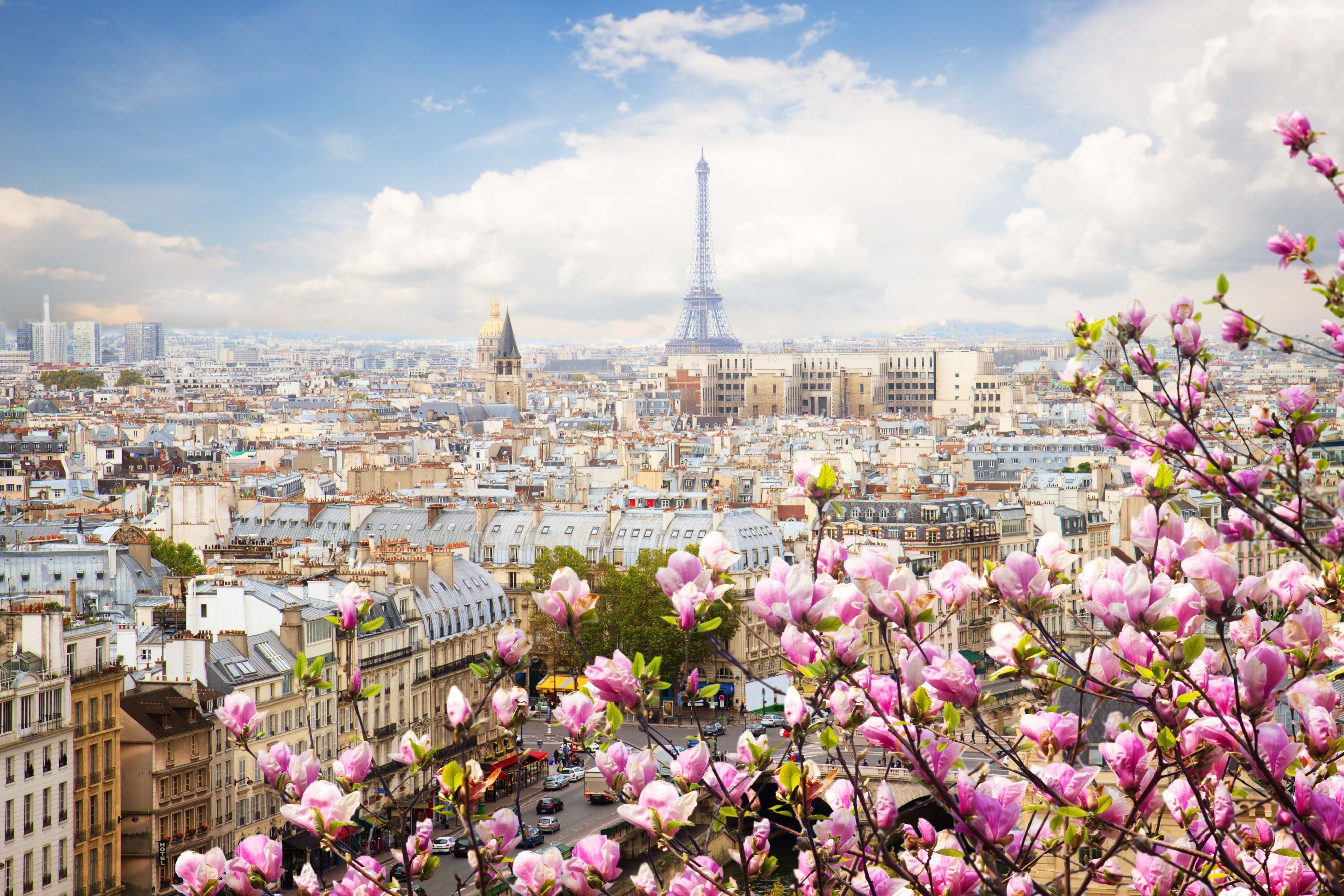 skip the line guided eiffel tower walking tour city wonders. Black Bedroom Furniture Sets. Home Design Ideas