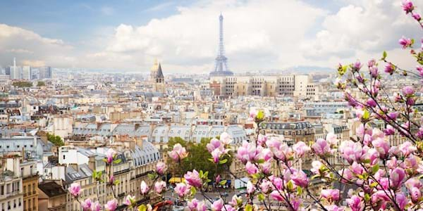 Eiffel Tower city view spring magnolias