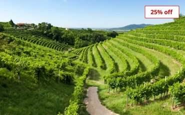 Valdobbiadene Vineyard italy